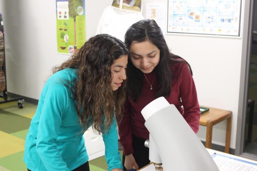 Seniors Jessica Corredor-Leon and Margo Cruz peer into a microscope on Fri., March 19. They both were volunteering at Ethos during the celebration of the 60th anniversary of the formation of NASA.