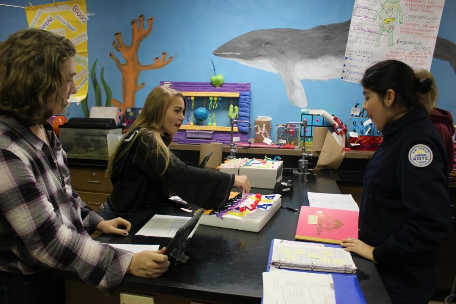 Sophomores Eliza DeBeck, Kaden Sullenger, and Ariana Correa label the parts of the simple cuboidal epithelium tissue on Monday, Nov. 4.