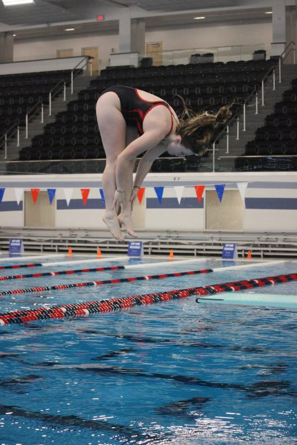 Junior Carrolyn Kiner-Sprow dives into the water on Jan. 2 at the Elkhart Aquatics Center. Carrolyn is one of the few divers on the Elkhart Memorial diving team.