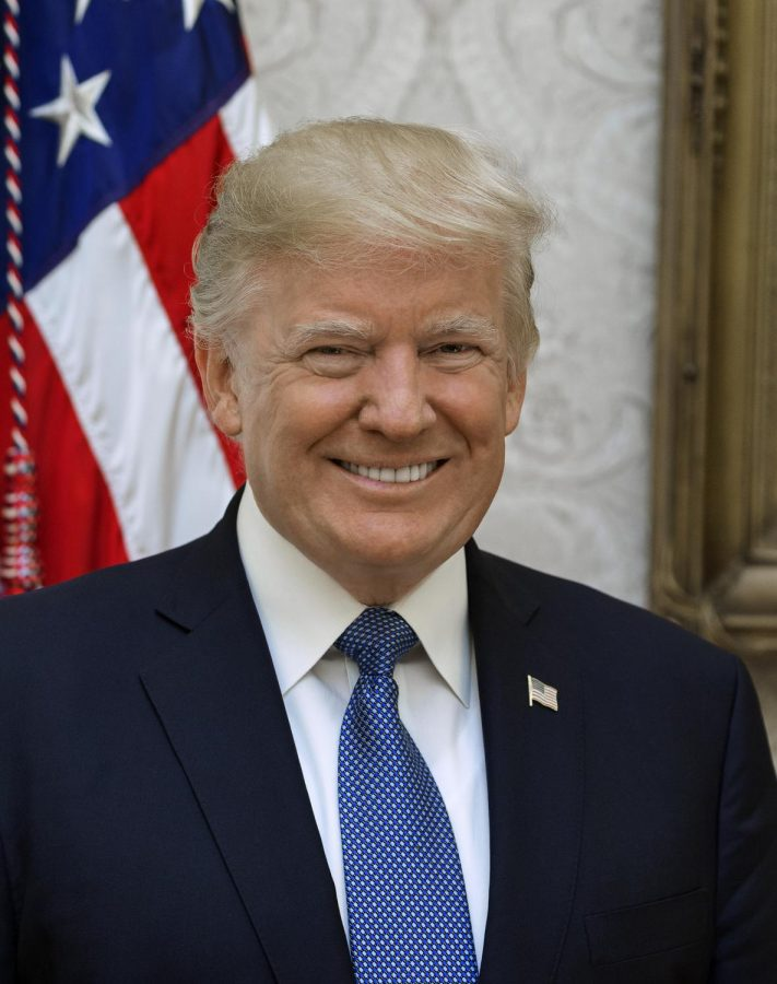Official White House portrait of President Donald J. Trump taken by Shealah Craighead on October 6, 2017 in Washington, D.C.
