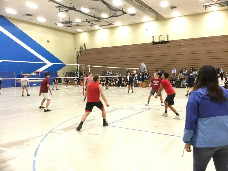 Sophomores Rule In Guys' Volleyball Tournament