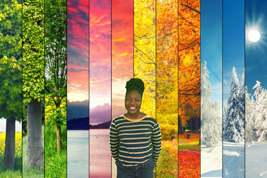 Four+seasons+collage%2C+several+images+of+beautiful+natural+landscapes+at+different+time+of+the+year%2C+autumn%2C+winter%2C+spring+and+summer+weather%2C+planet+earth+life+cycle+concept