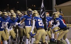 The Pride of the Lions Continue after Regional Loss
