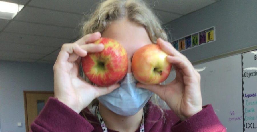 The History Of Apples Stems Back Long Before Johnny Appleseed